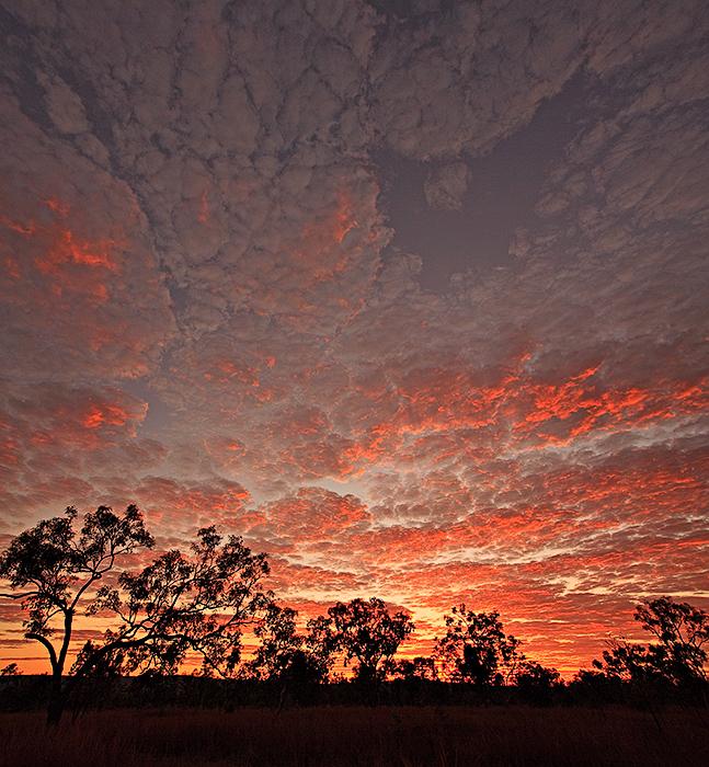 Outback Kimberley Sunrise - vertical
