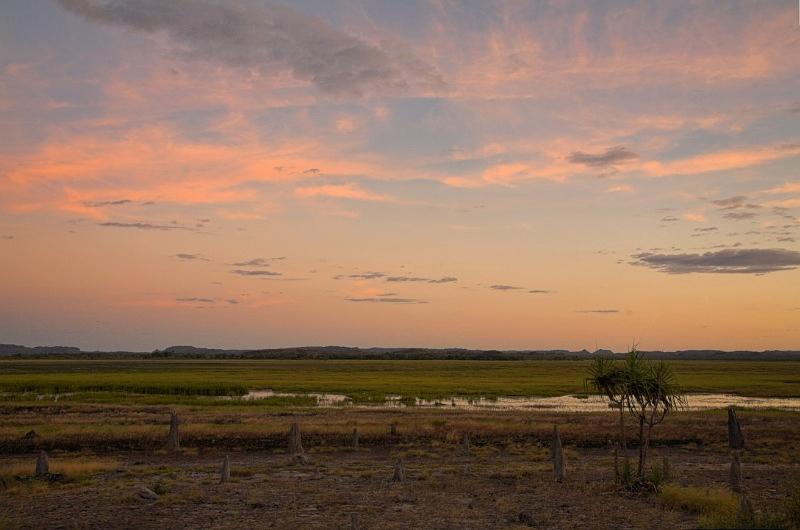 Hawk Dreaming - billabong at dusk