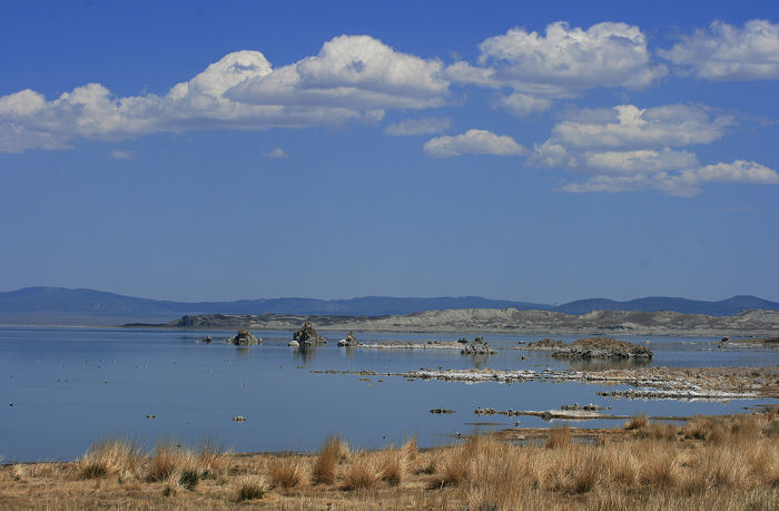 Mono Lake Picnic Area