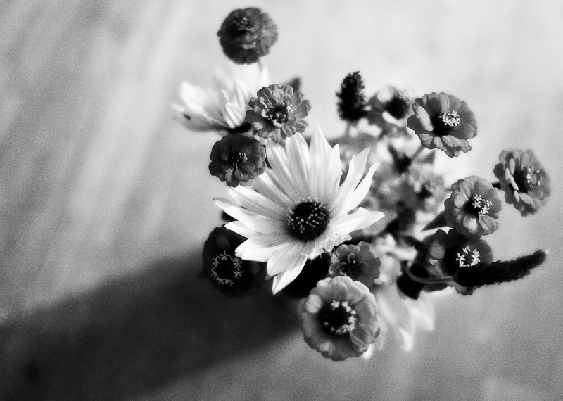 Garden Wildflower Bouquet