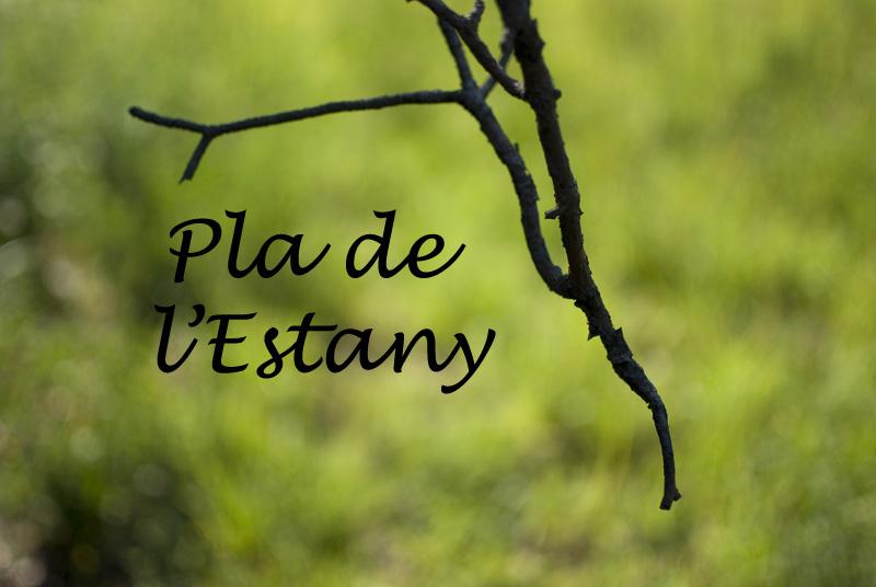 Pla de lEstany