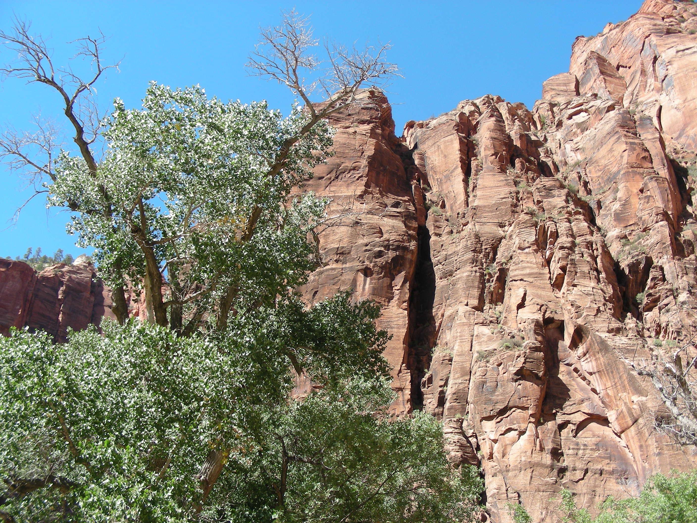 Hiking view 1.JPG