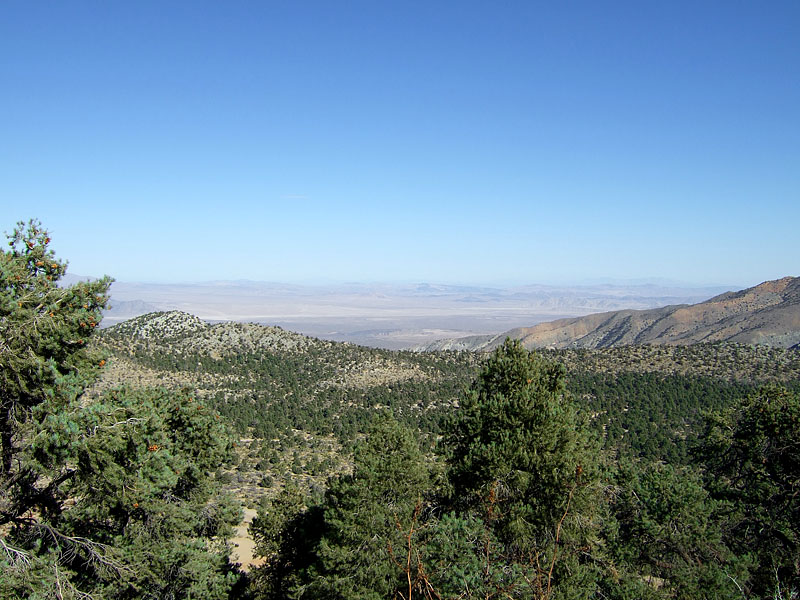 Mojave Desert From The San Bernadino Mountains