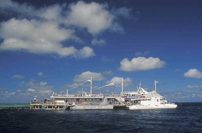 Reefworld pontoon at Hardy Reef