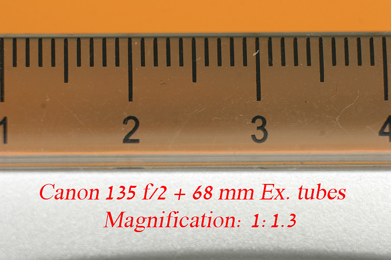 macro with ex tubes.jpg