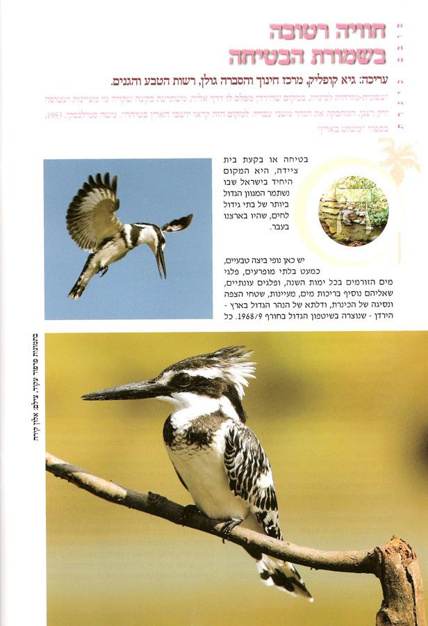 Around the Sea of Galilee magazine