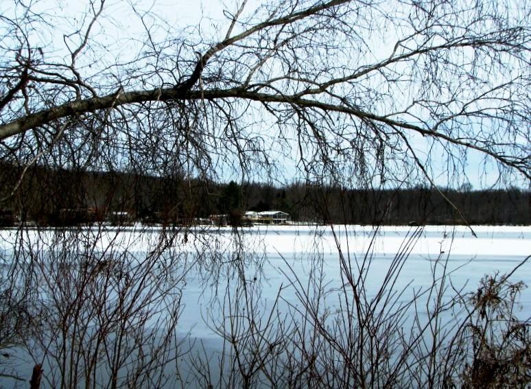 Jefferson Lake Walk
