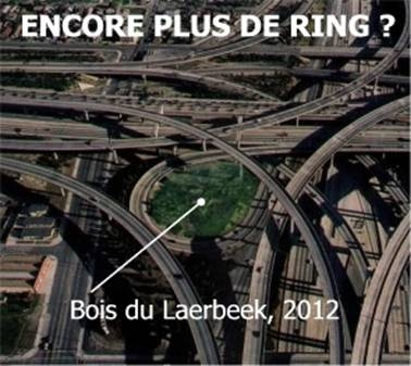 Encore plus de ring ?
