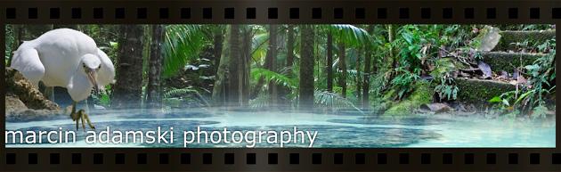marcin adamski photography