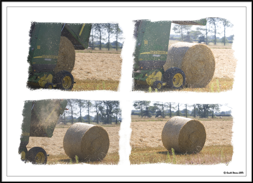 Birth of a hay bale!