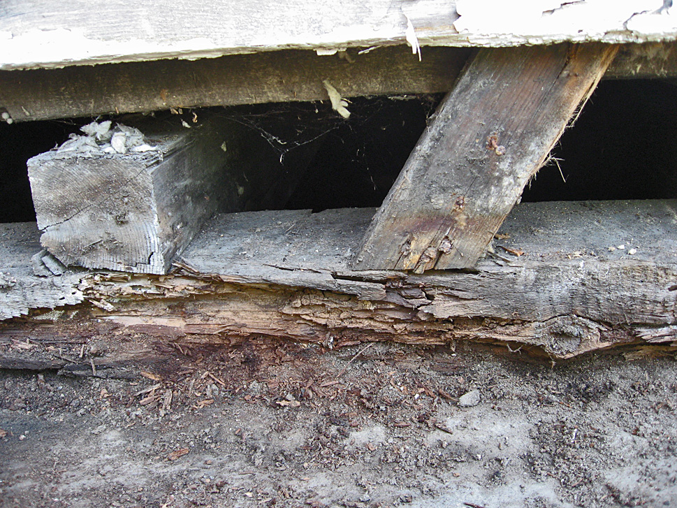 The Sill Plates under the waiting room are rotten and must be replaced.