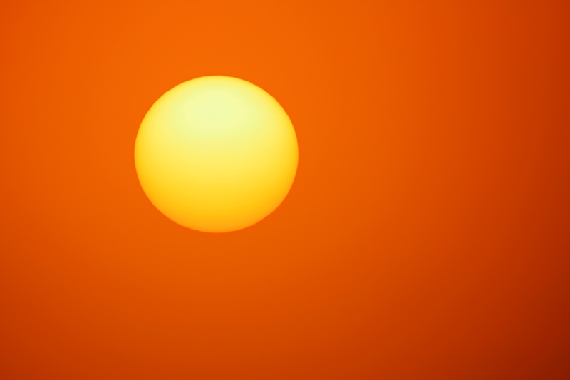 Just the Sun (or Ball of Fire), Everglades National Park