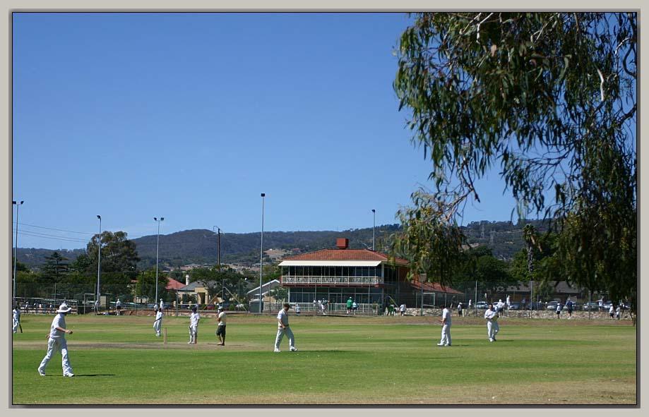 Cricketers on Don Bradmans turf