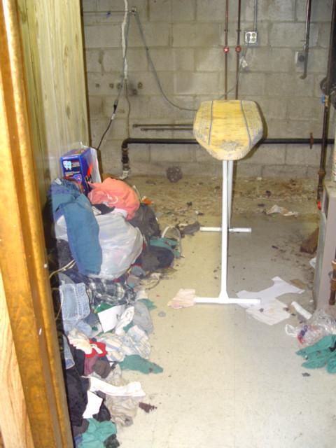 Basement, room 2