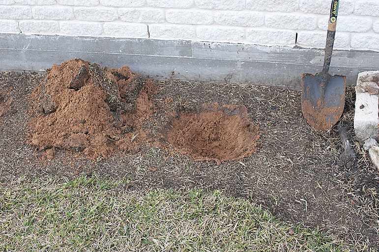 Hole to backfill with compost and topsoil