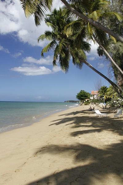 4.  The beach at Parador Villa Antonio