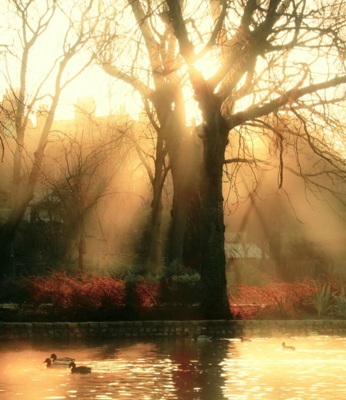 IMAGE: http://www.pbase.com/jabtas/image/148245945.jpg