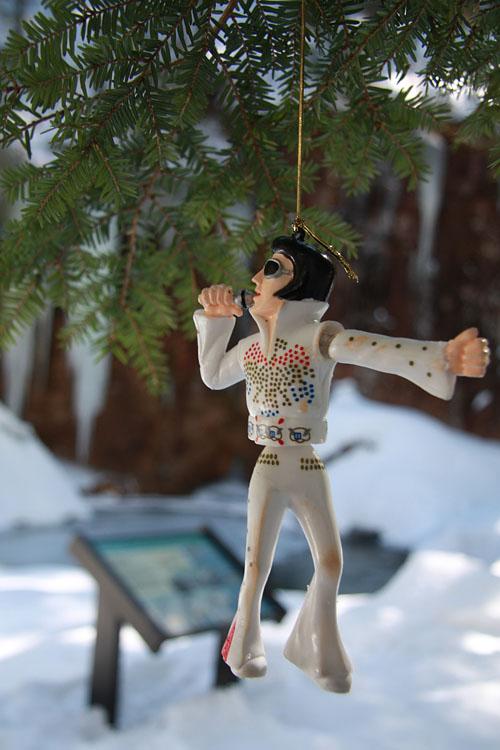 Wackel-Elvis, Sabbaday Falls, New Hampshire