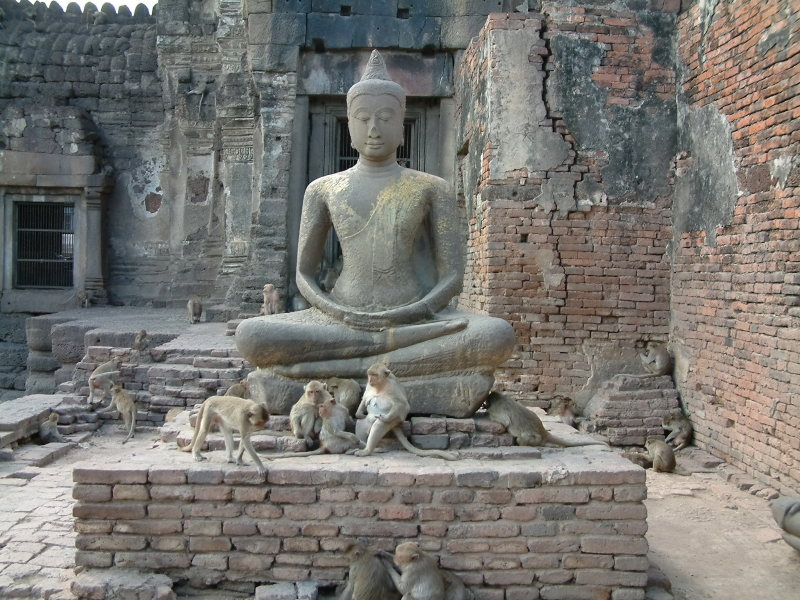 Temple in Lopburi Overrun by Monkeys