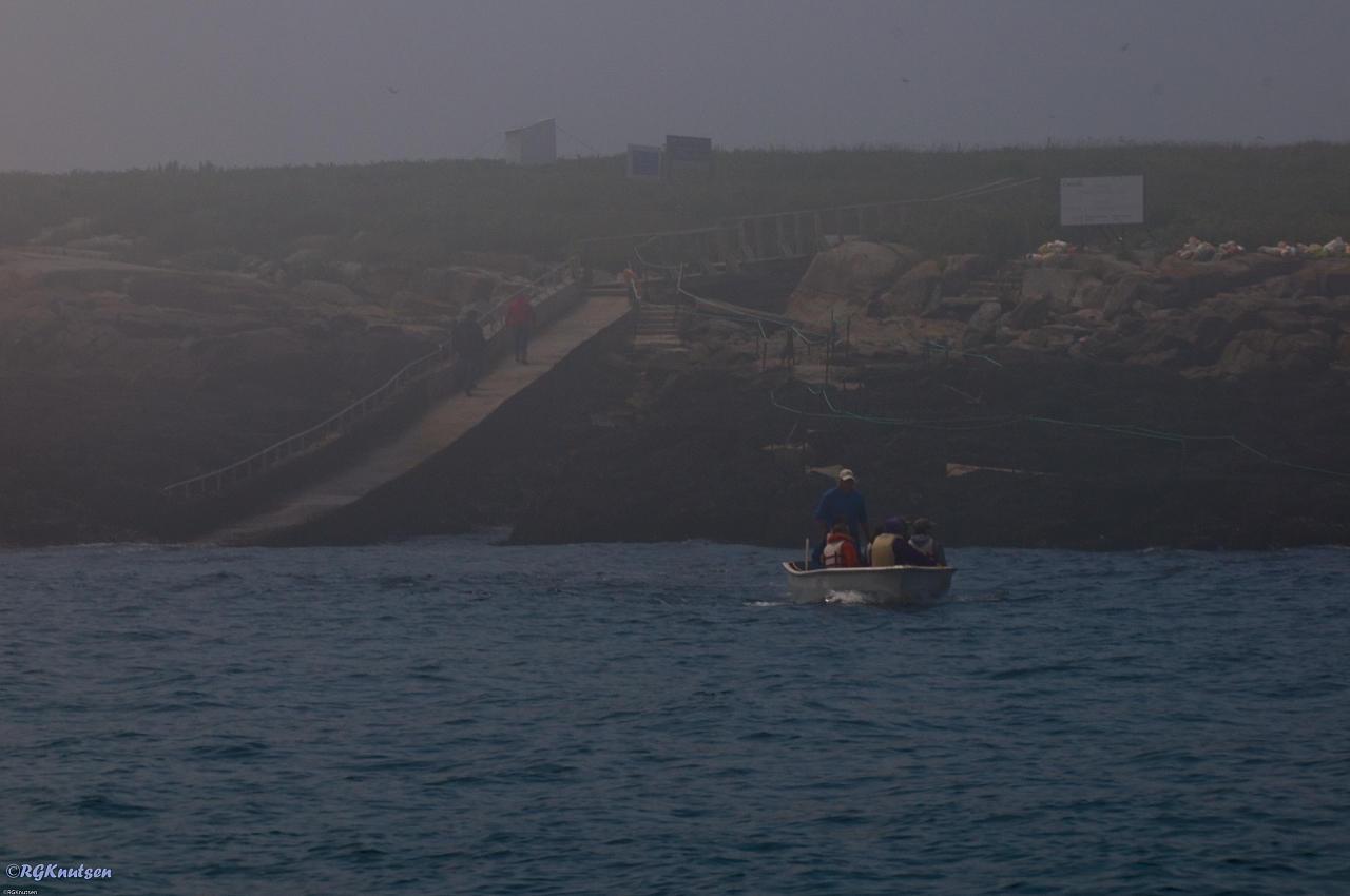 Machias Seal Island - Access point