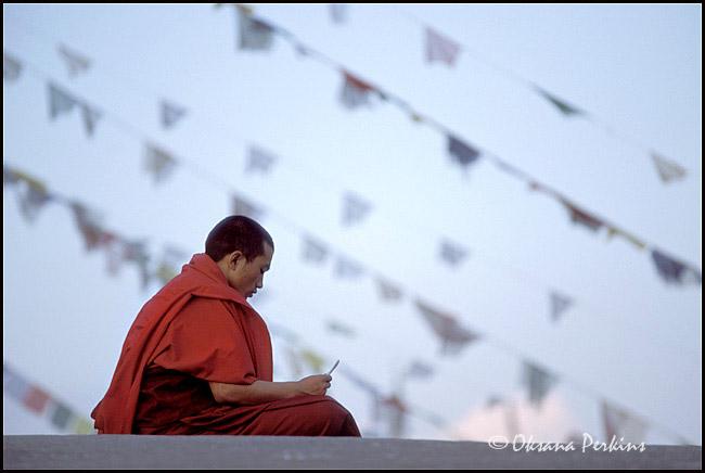 Monk, Bodhnath