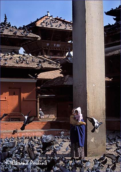 Pigeons 1, Durbar Square, Kathmandu