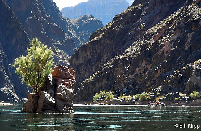 River Rafting Colorado River  5