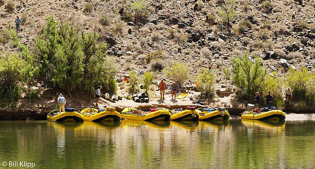 Colorado River Rafting Trip  10
