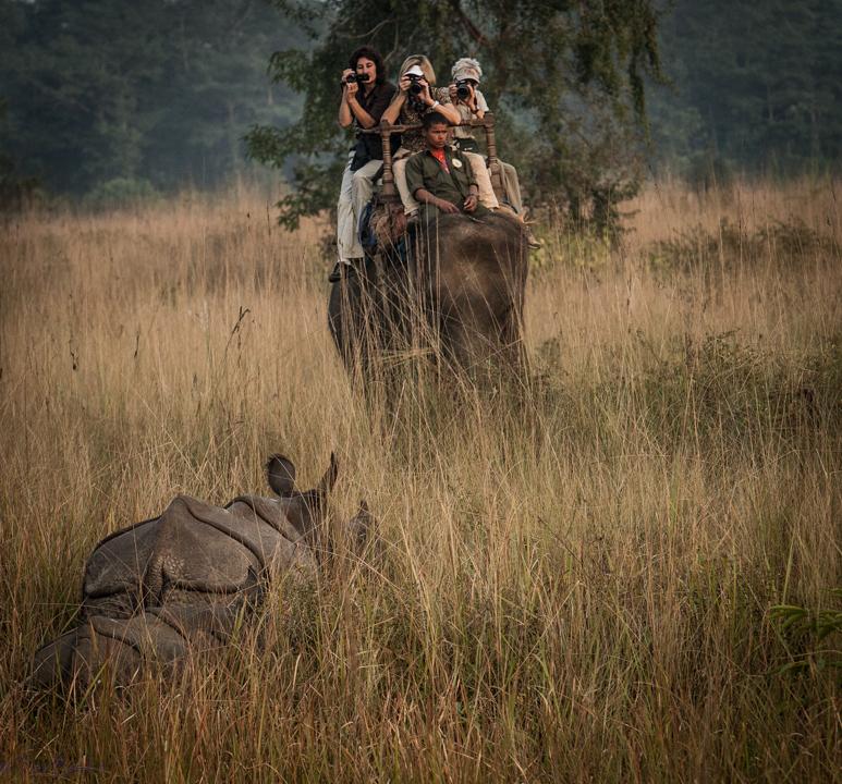 Safari in Chitwan NP