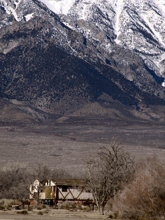 <B>Majesty and Confinement</B> <BR><FONT SIZE=2>Manzanar National Monument, California February 2007</FONT>