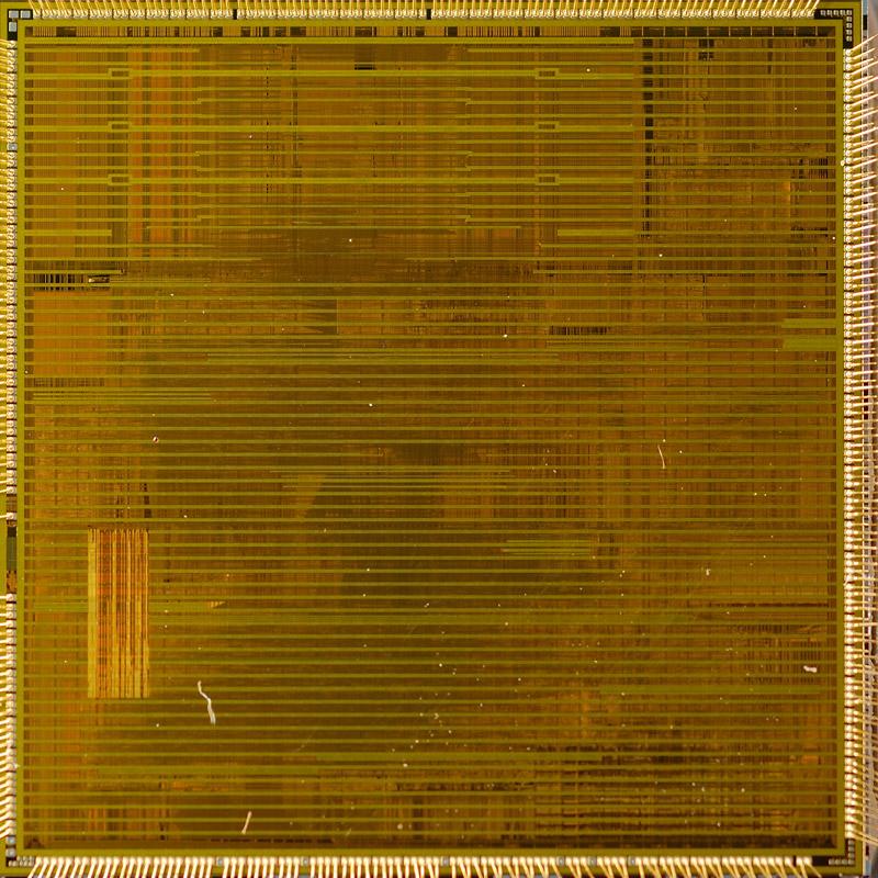chip19_007.jpg