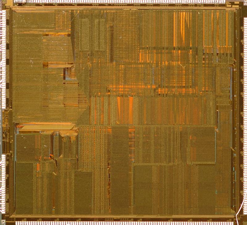 chip30_014.jpg
