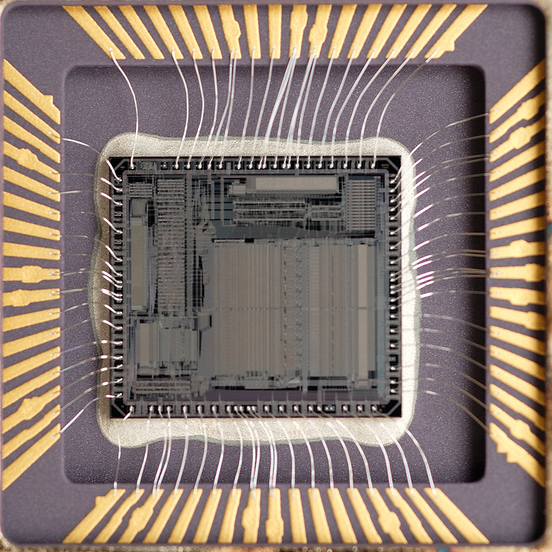 chip36_013.jpg