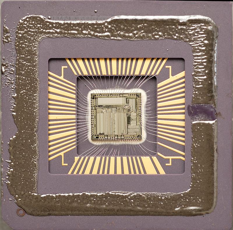 chip37_010.jpg