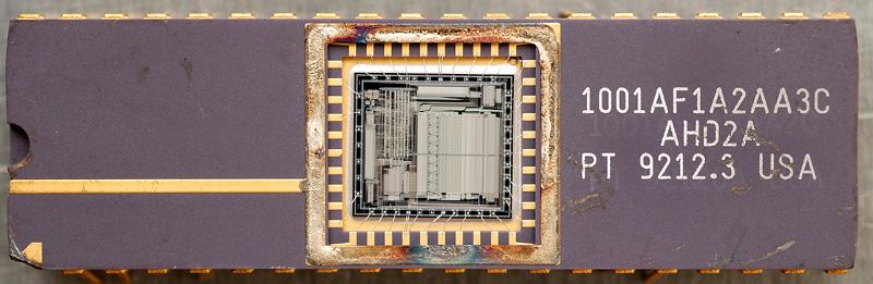 chip38_010.jpg