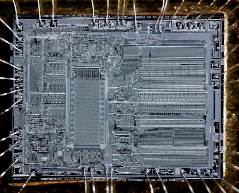 chip40_003.jpg
