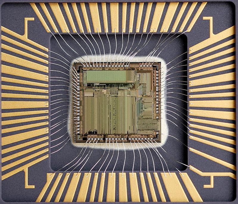 chip41_003.jpg