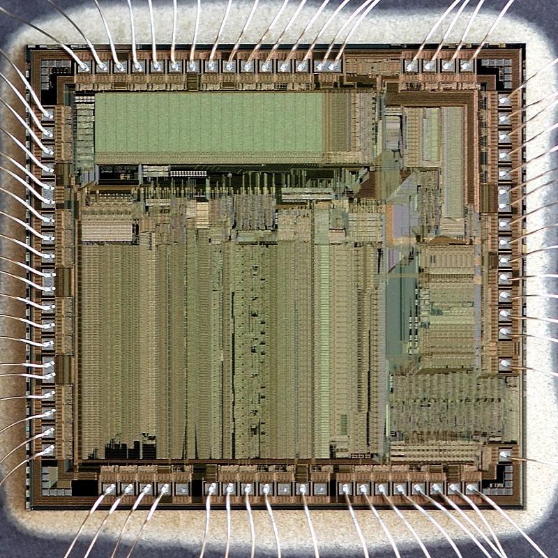 chip41_005.jpg