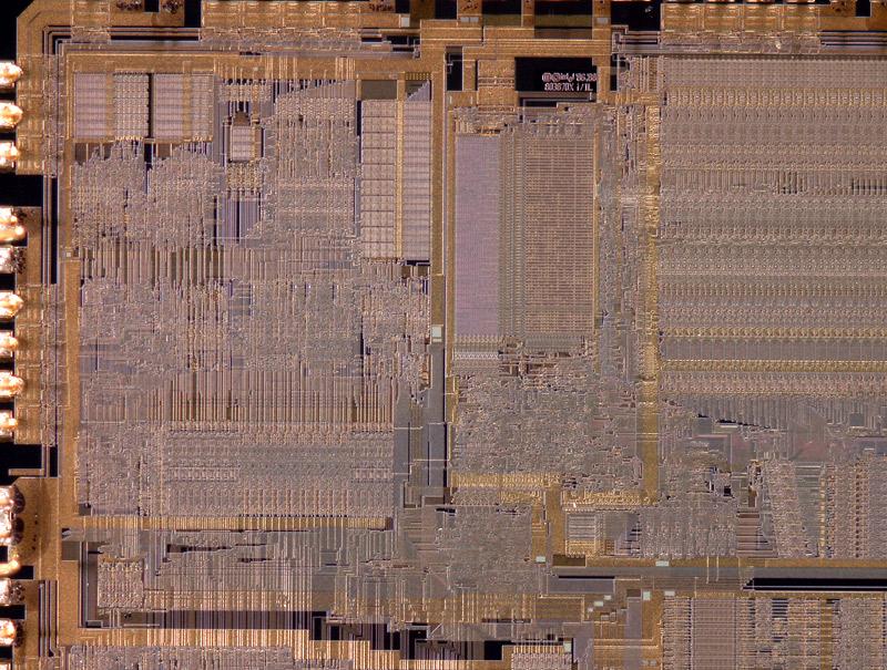 chip29_023.jpg