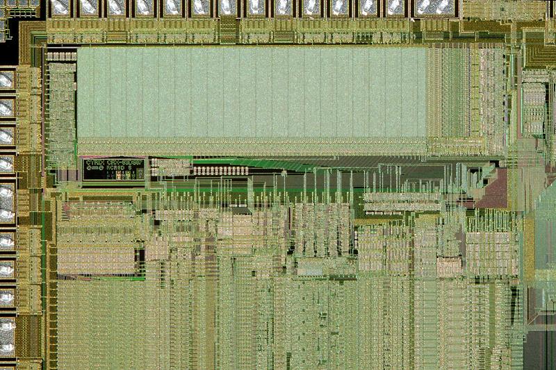 chip41_014.jpg