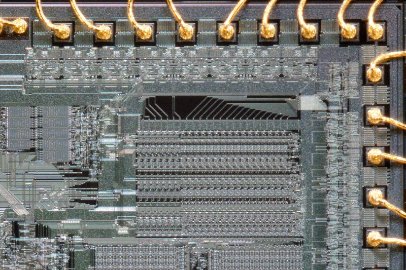 chip28_007.jpg