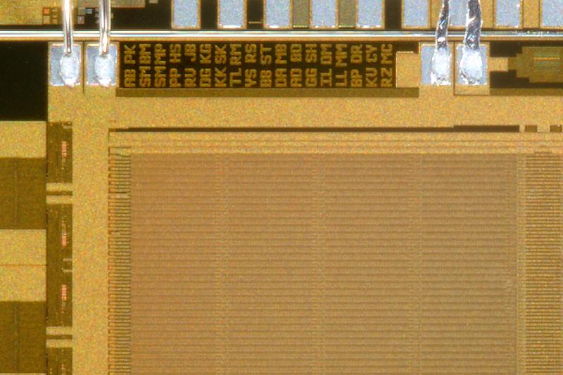 chip01_082.jpg