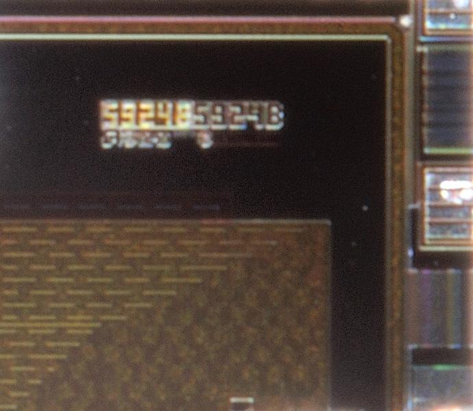 chip10_012.jpg macro 64:1