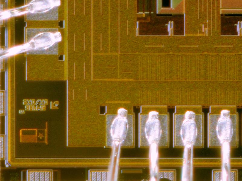 chip11_011.jpg macro 39:1