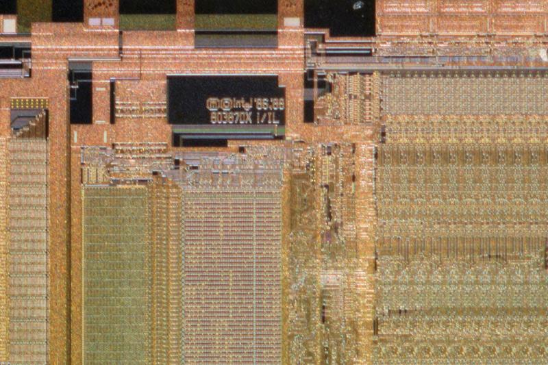 chip29_131.jpg macro 21:1
