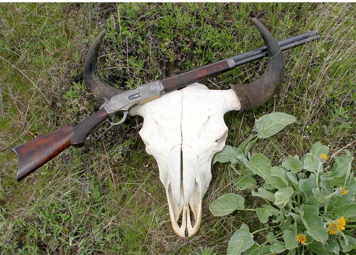 Buffalo skull and 1876 1 of 1000 sn 10014 img 0020