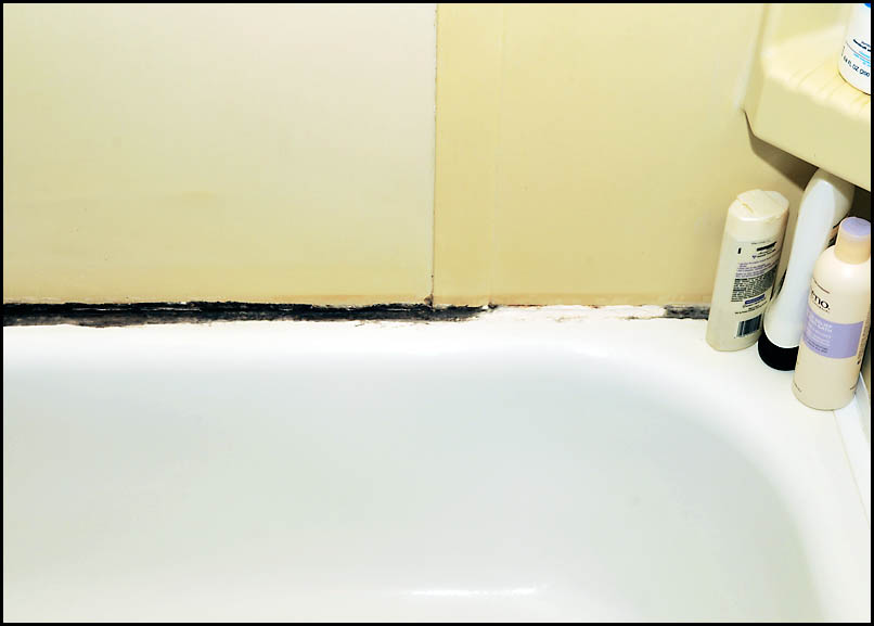Black Stuff Growing On Bathtub And Caulk Doityourself Com Community Forums