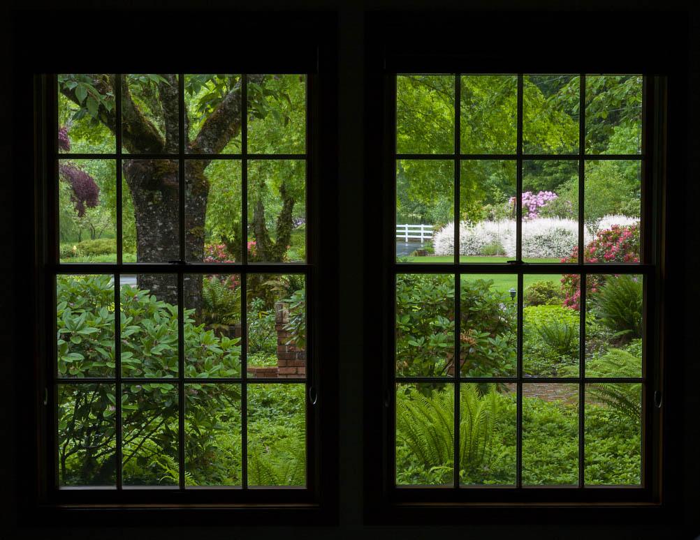Through a Window, Darkly