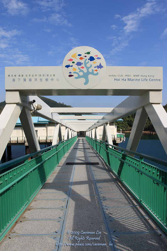 Hoi Ha Marine Life Centre