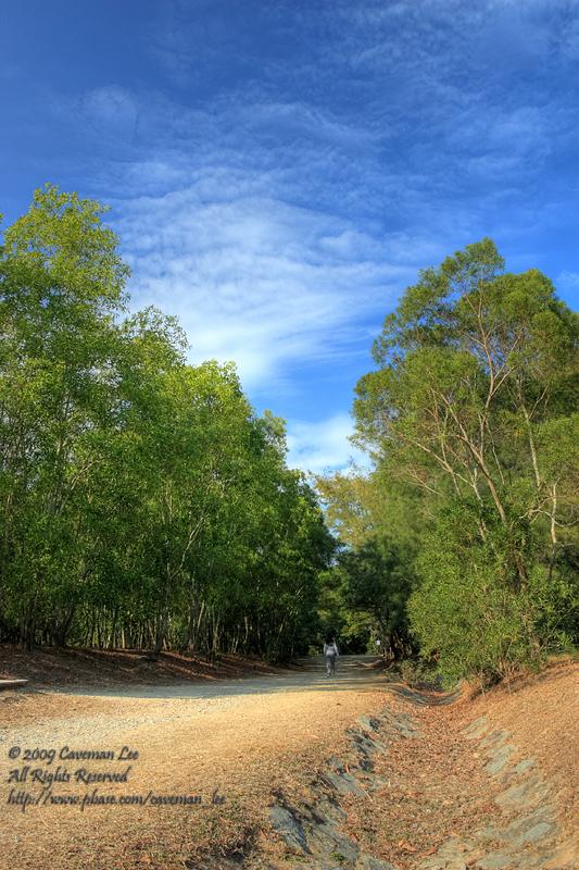 A green path